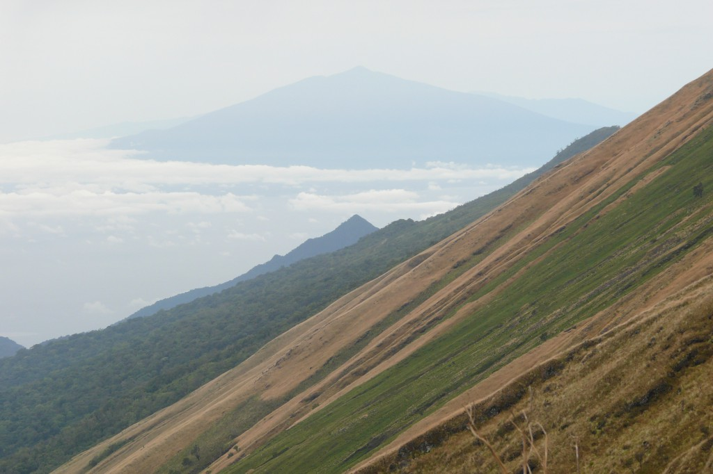 The view from Mount Cameroon