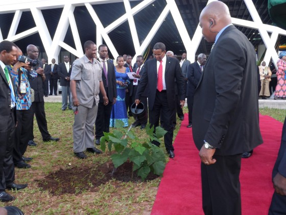 Tanzania's President plants a Critically Endangered Lake Latumba Coral tree