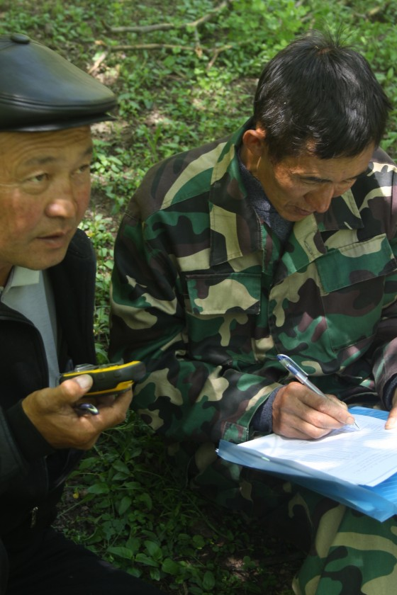 Rangers of Sary-Chelek Reserve practice GPS work as part of new GTC supported threatened tree monitoring in the reserve