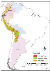 Andes Map: Study area showing forest and protected area coverage.
