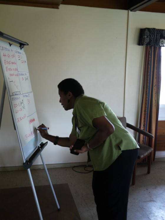Red List Training in Fiji 2016. Photo Credit: Malin Rivers/ BGCI